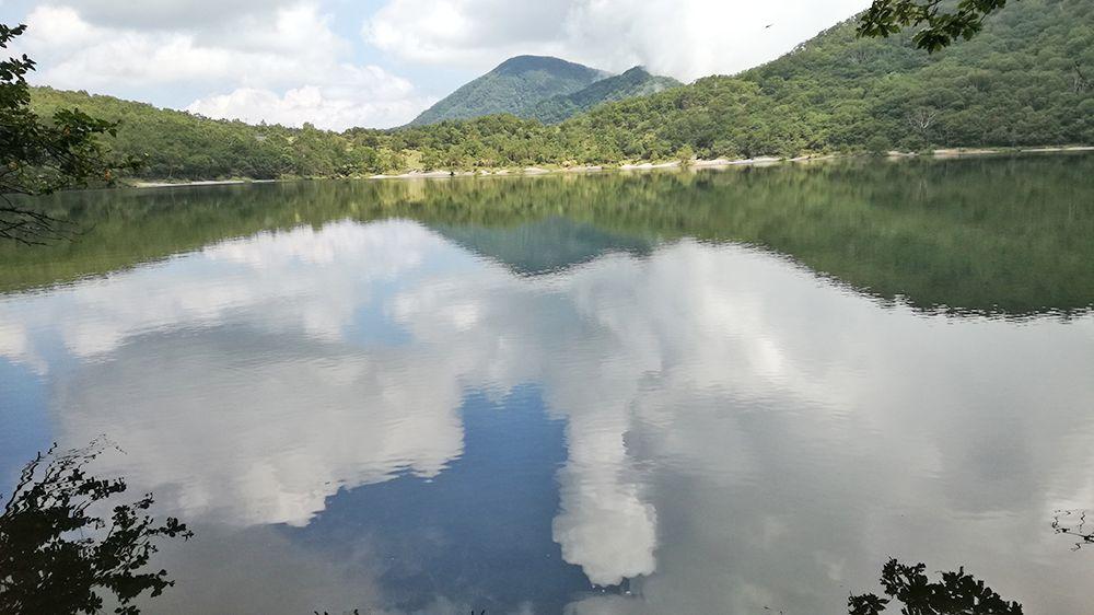 小沼の風景