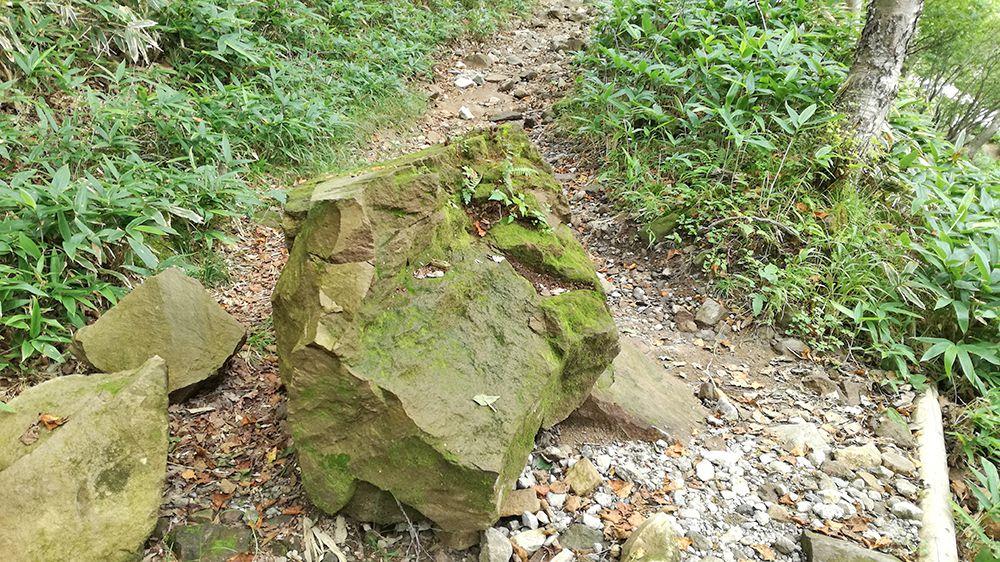 小沼にある道の石