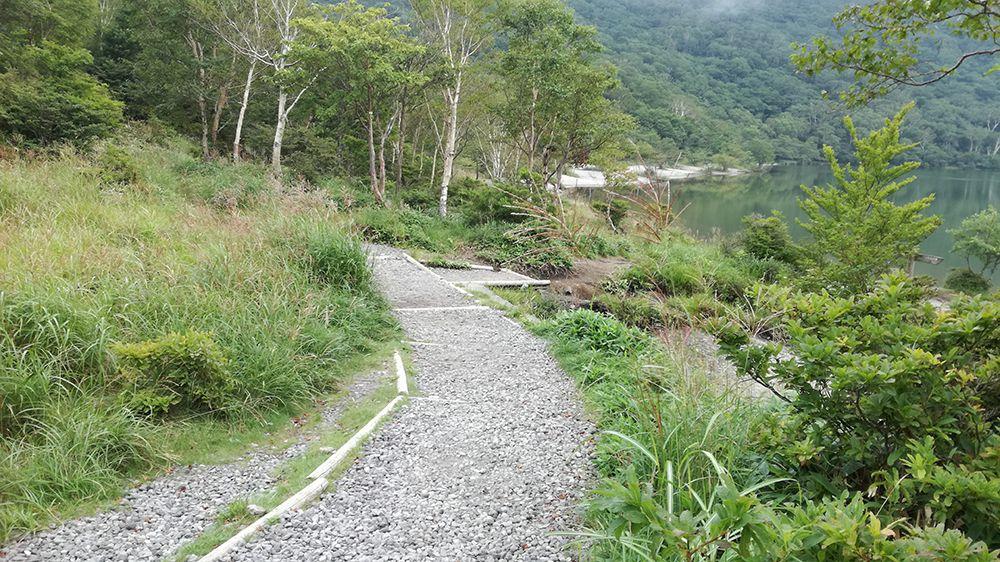 小沼の周りの道