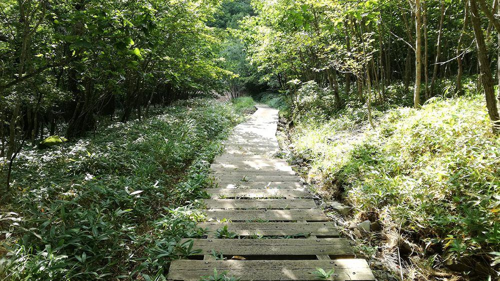地蔵岳の遊歩道
