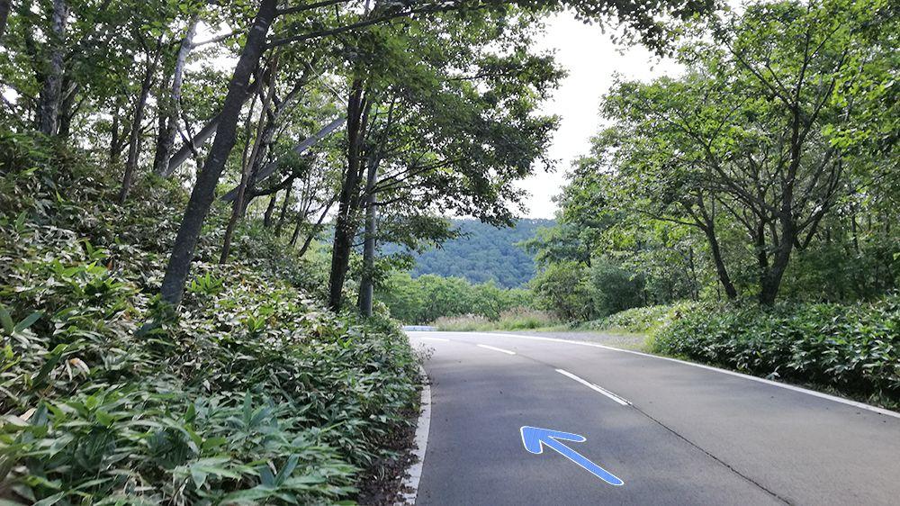 地蔵岳から小沼駐車場までの道