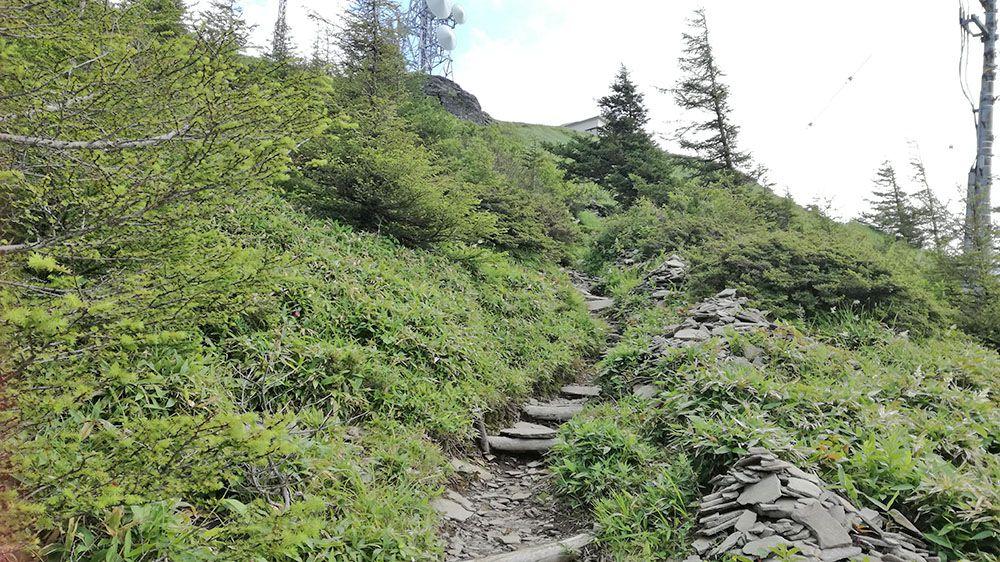 美ヶ原高原の遊歩道
