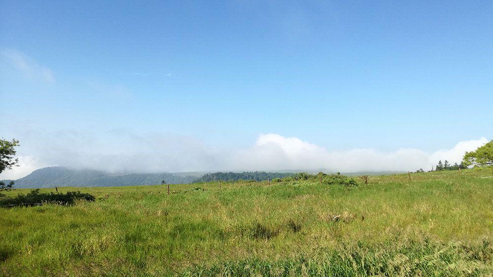 美ヶ原高原の遊歩道からの風景