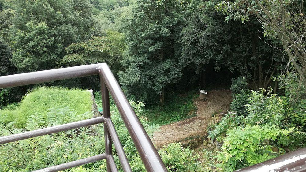 金山城跡の物見台から見る物見台下虎口周辺