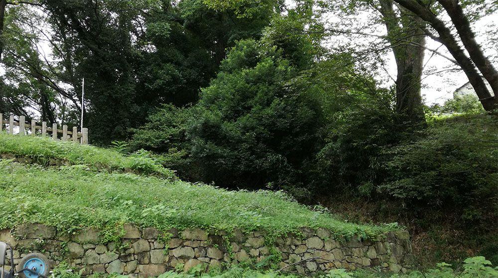 金山城跡の馬場曲輪から月ノ池への道で見た馬場曲輪の石垣