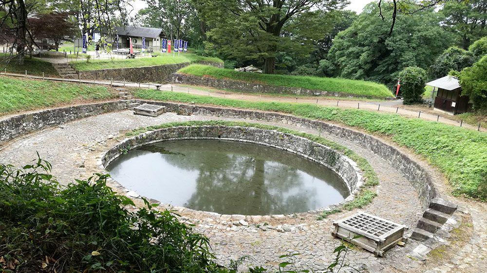 金山城跡の万葉歌碑から見た日ノ池