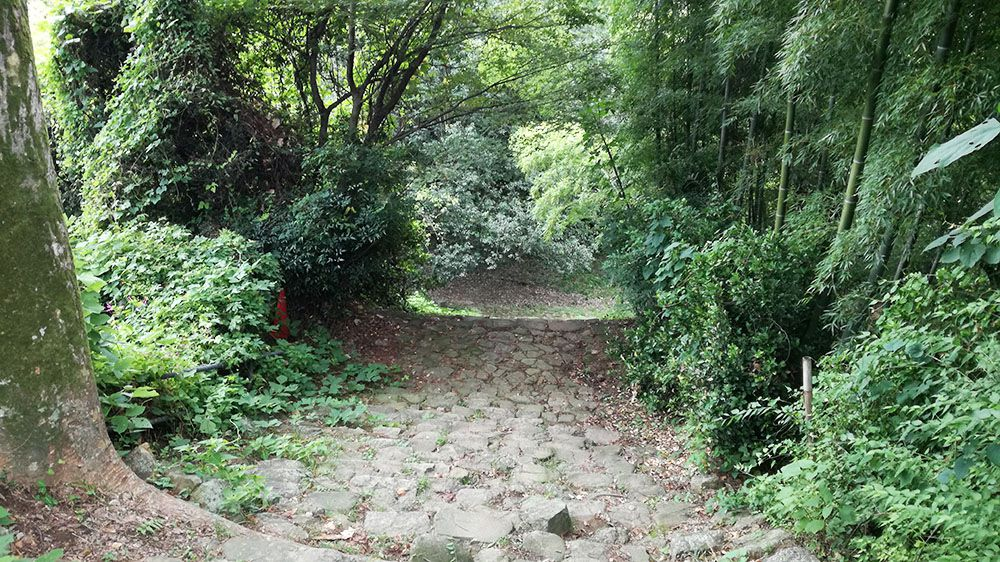 金山城跡の新田神社から御城橋までの道にある石階段