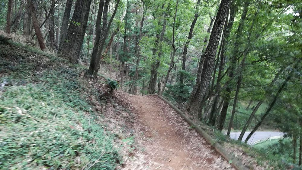 金山城跡の新田神社から御城橋までの道