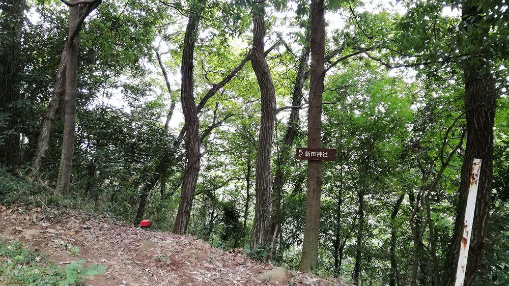 金山城跡の新田神社から御城橋までの道にある看板